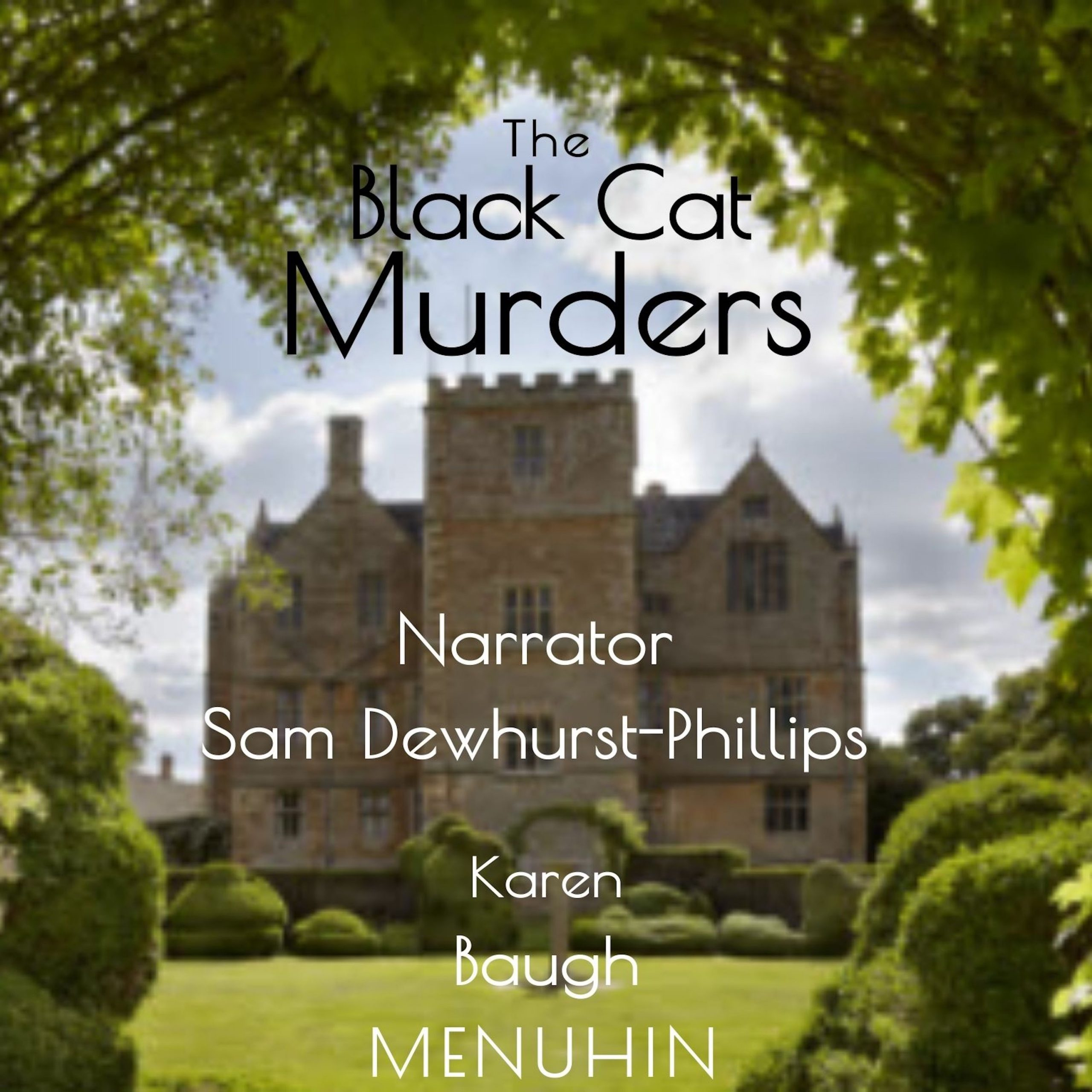 The Black Cat Murders Audiobook Cover